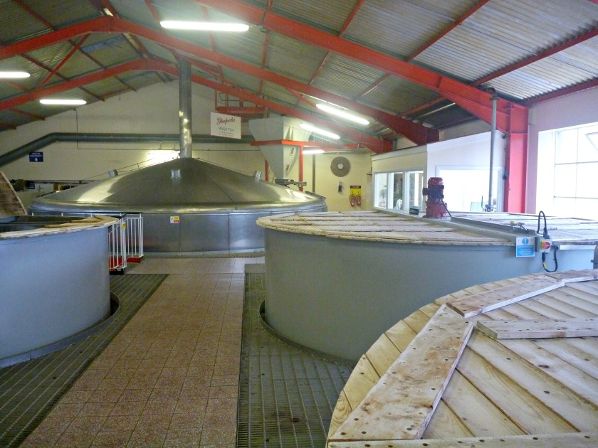 Mash Tun and Washbacks