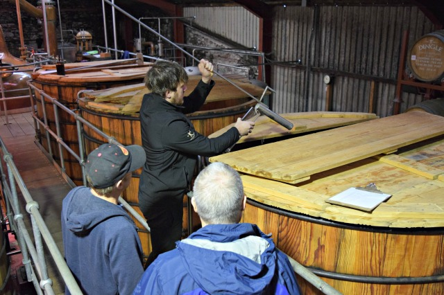 Testing the potency of the fermentation process in the washback